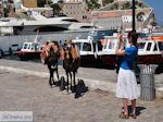 Eiland Hydra Griekenland - De Griekse Gids Foto 31