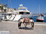 Eiland Hydra Griekenland - De Griekse Gids Foto 35