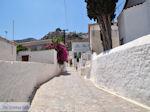 Eiland Hydra Griekenland - De Griekse Gids Foto 46